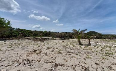 Six Beachfront Lots at Swanish, Utila,