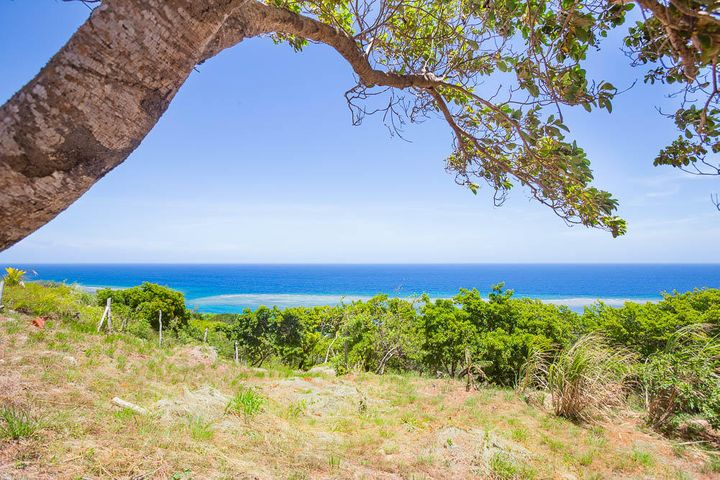Build your dream home on this stunning ocean view lot