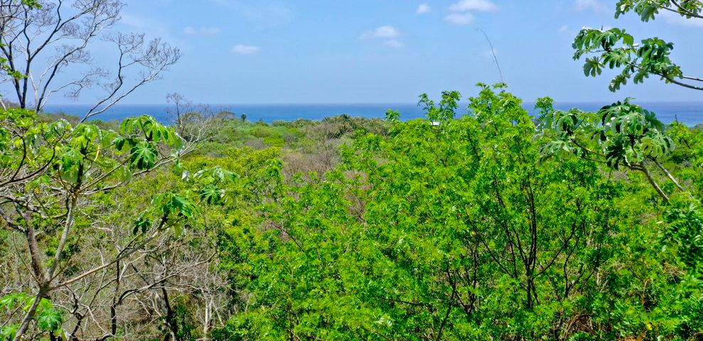 Great property for development, 9.4 acres on West Bay Road, Roatan,