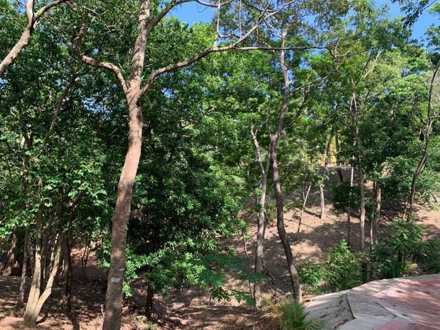 Turtling Bay Lot #17, Almost 1/2 acre, Roatan,