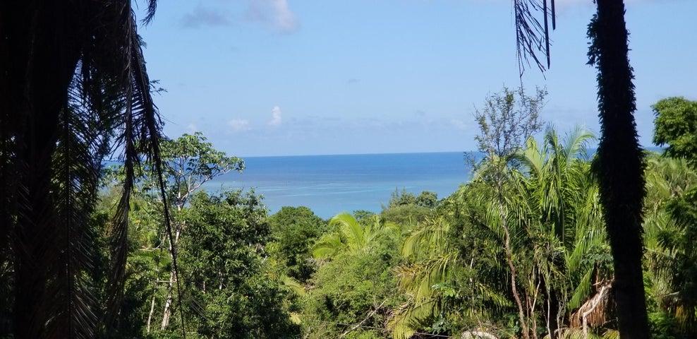 Palmetto Vista. Road, Ocean View Lot #4, Roatan,