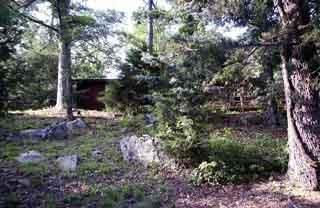 Main photo 5 of sold home at   #1632 Road, Belleville, AR 72824