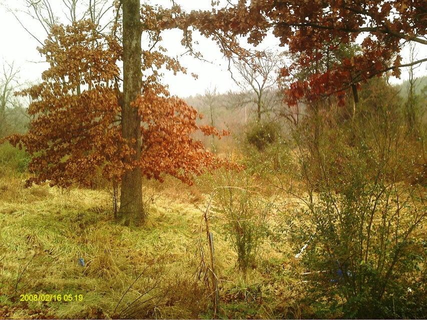 Main photo 7 of sold home at 974  BING Road, , AR 72025