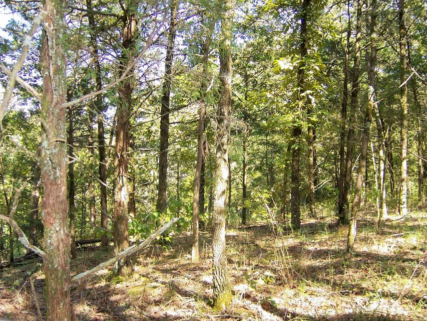 Main photo 16 of sold home at 22363  HWY 307 , Belleville, AR 72834