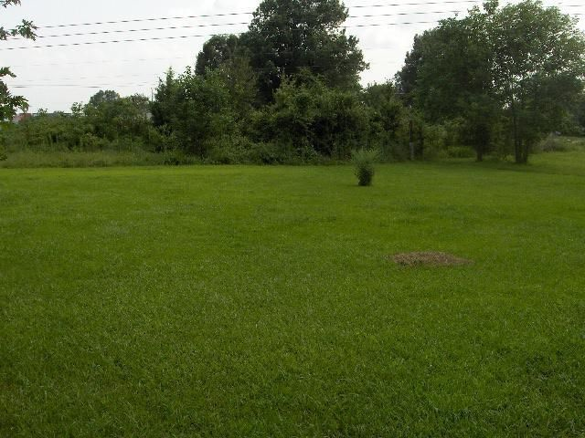 Main photo 14 of sold home at 8081 SR 27 , Hector, AR 72843