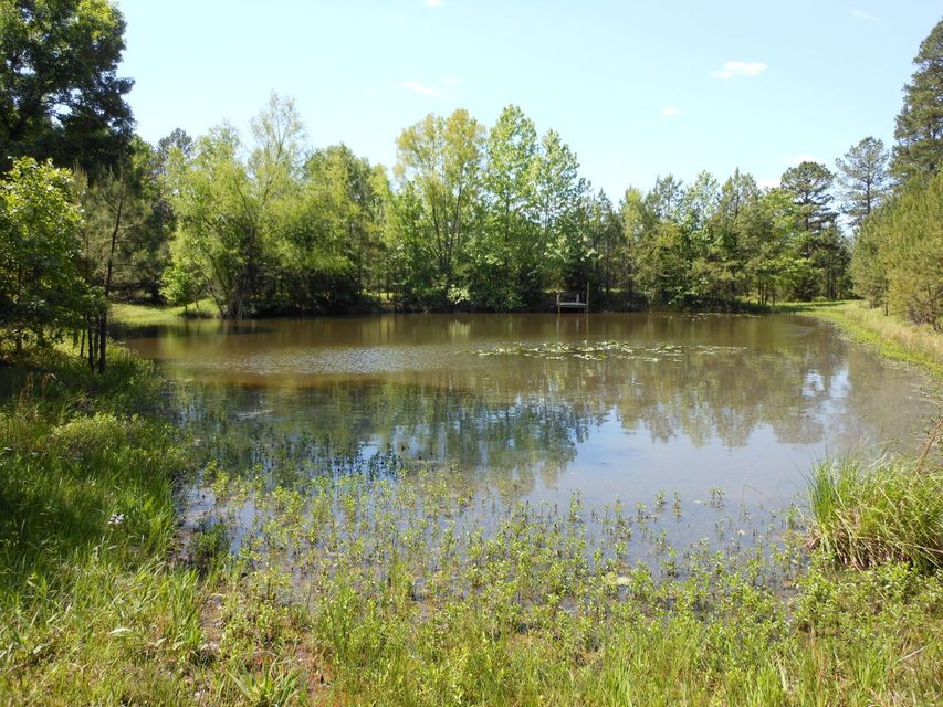 Main photo 34 of sold home at 80  CLEARWATER Drive, , AR 72025