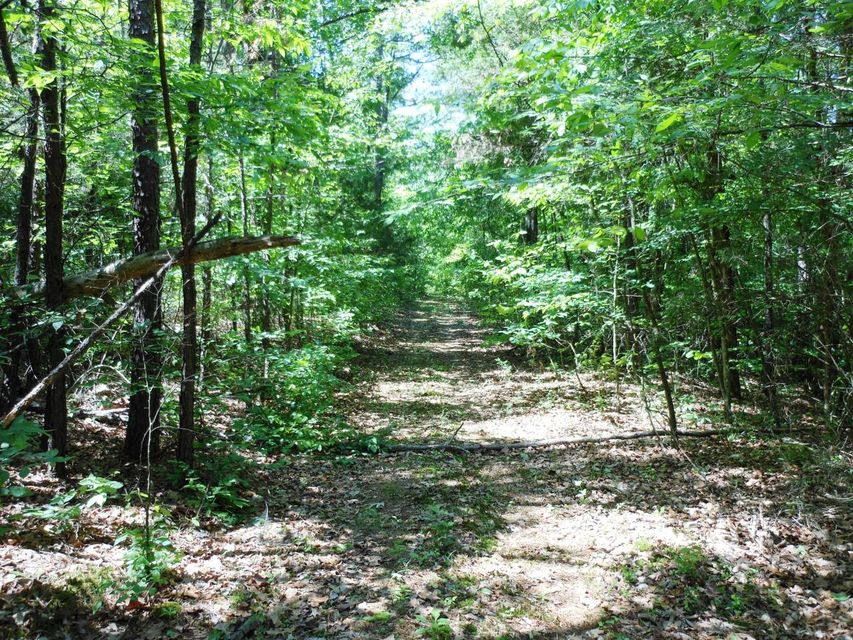 Main photo 35 of sold home at 80  CLEARWATER Drive, , AR 72025