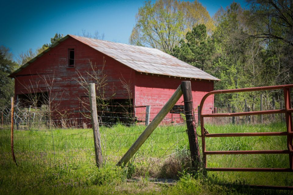 Main photo 7 of sold home at 1116  SR 164 , Hector, AR 72843