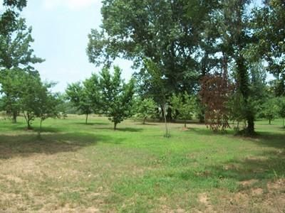 Main photo 22 of sold home at 3951  Co Rd 3171 , Hartman, AR 72840