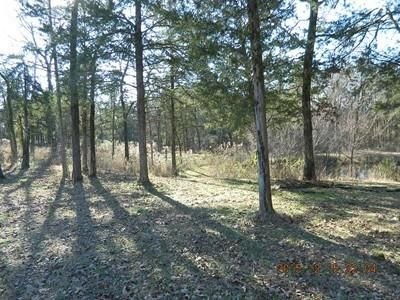 Main photo 23 of sold home at 3951  Co Rd 3171 , Hartman, AR 72840