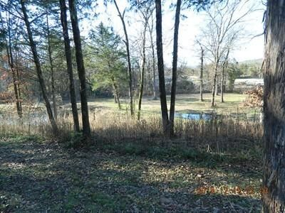 Main photo 24 of sold home at 3951  Co Rd 3171 , Hartman, AR 72840