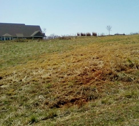 Photo of Lot 9 Westerham CT Huddleston VA 24104