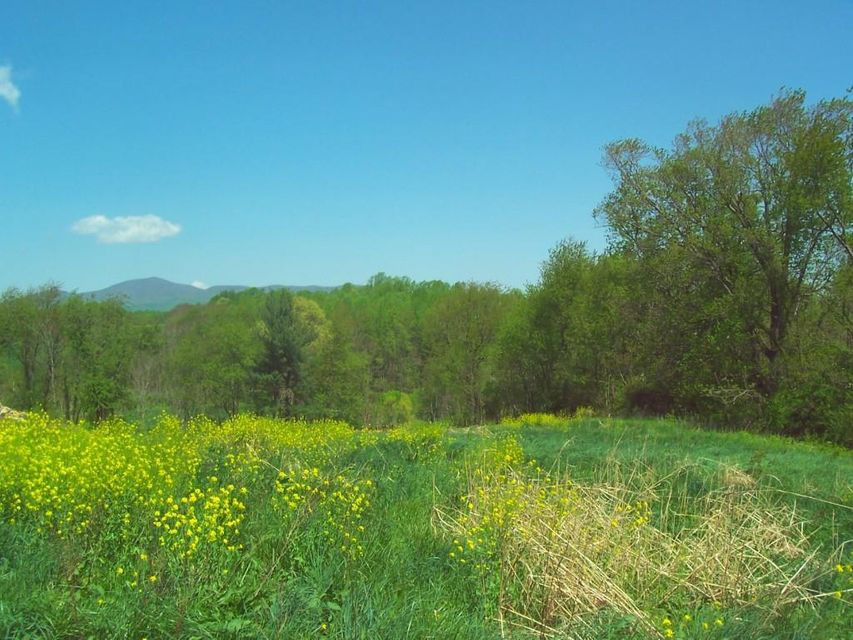 Photo of LOT 12 KEITHS PLACE DR Rocky Mount VA 24151