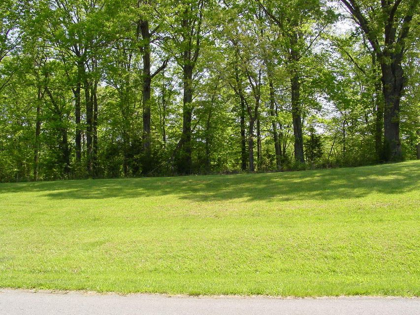 Photo of Lot 44 Cambridge CT Hardy VA 24101