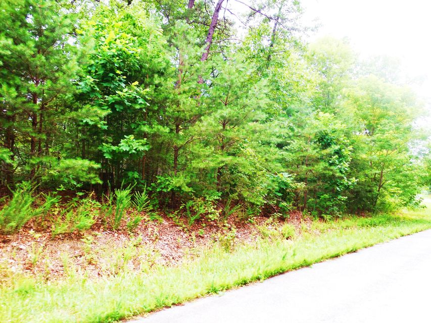 Photo of Lot 2 Waterford DR Moneta VA 24121