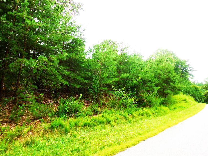 Photo of Lot 4 Waterford DR Moneta VA 24121
