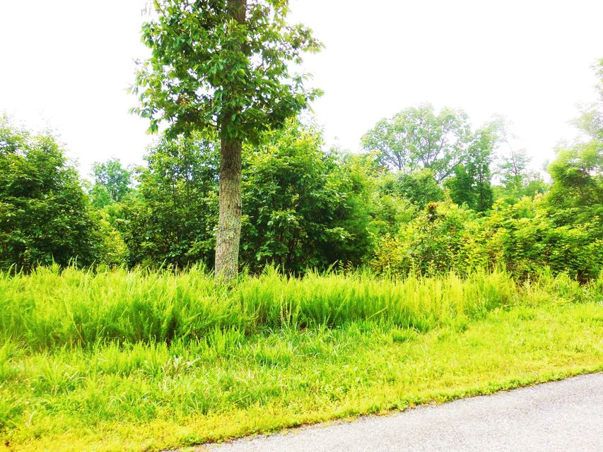 Photo of Lot 8 Waterford DR Moneta VA 24121