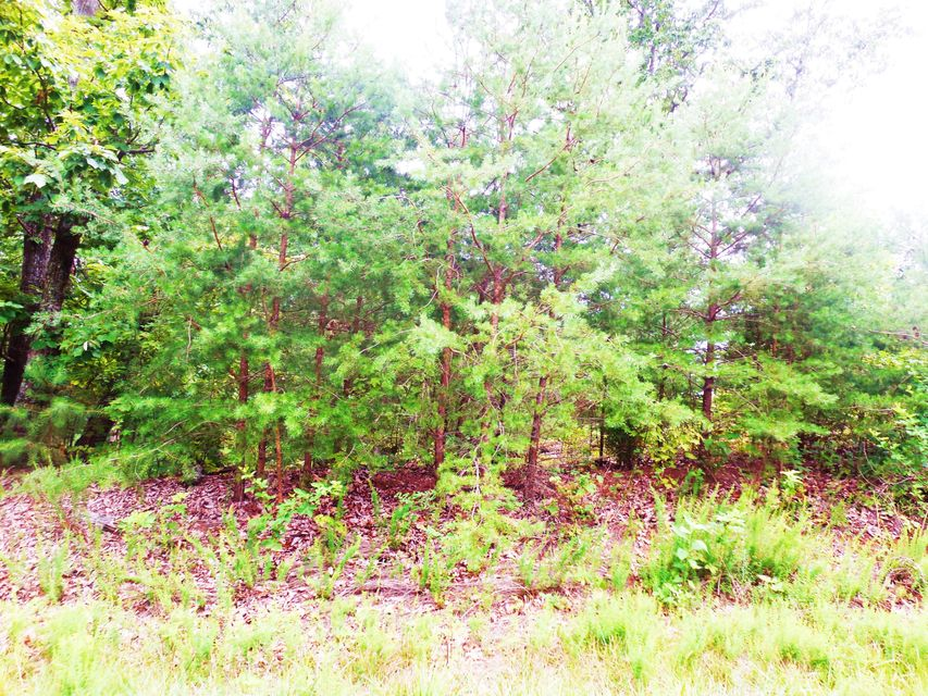 Photo of Lot 17 Waterford DR Moneta VA 24121