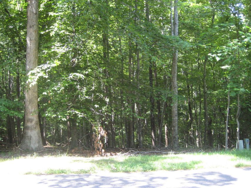 Photo of Lot 100 Woodley RD Moneta VA 24121