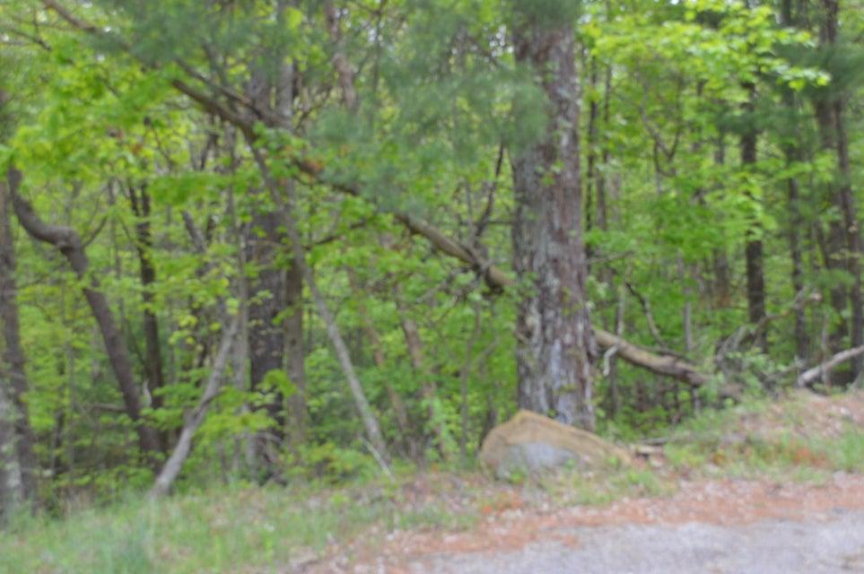 Photo of 0 Cumberland Gap RD Newport VA 24128