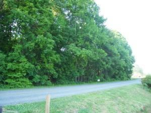 Photo of Lot 11 Mallard Point RD Wirtz VA 24184