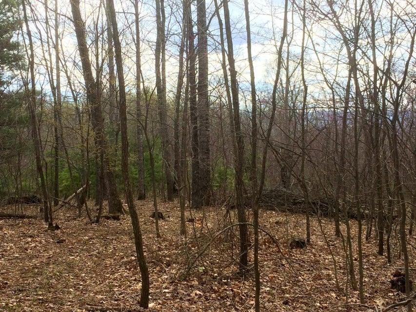 Photo of 0 Chestnut Ridge RD Millboro VA 24460