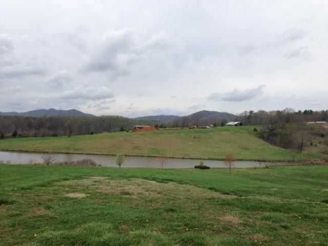 Photo of Lot 19 Dudley Creek RD Hardy VA 24101