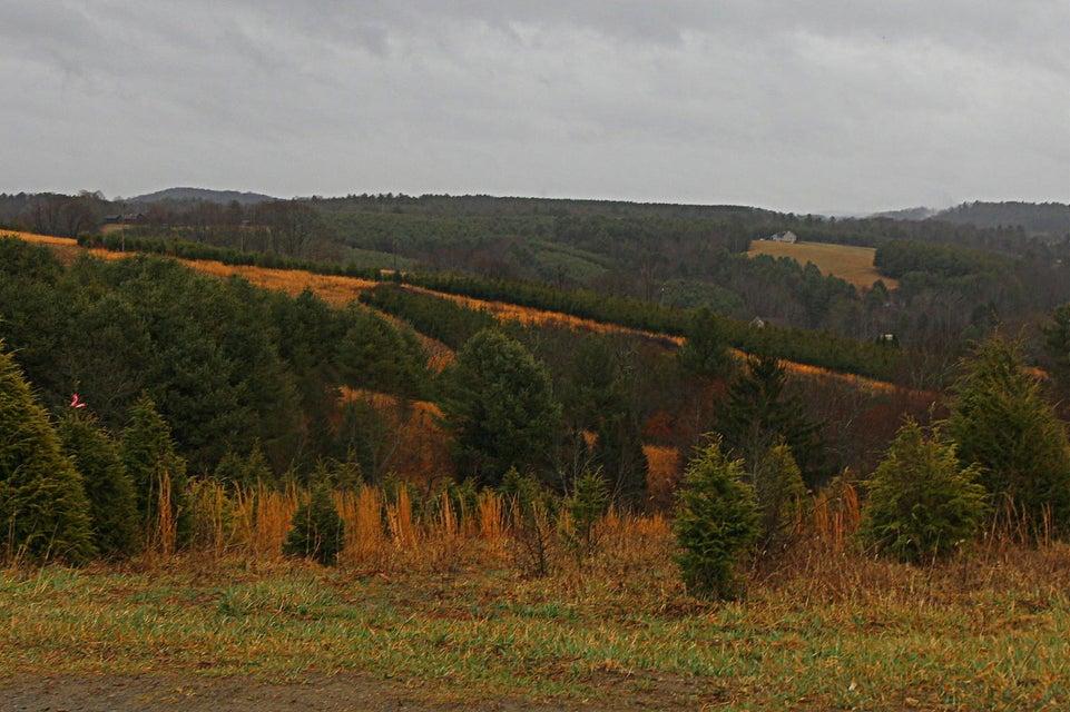 Photo of 0 Webbs Mill RD Floyd VA 24091