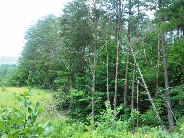 Photo of 0 Half Acre of Rocks RD Elliston VA 24087