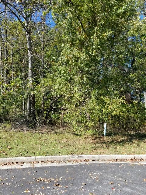 Photo of 1818 Charlestown Square Vinton VA 24179