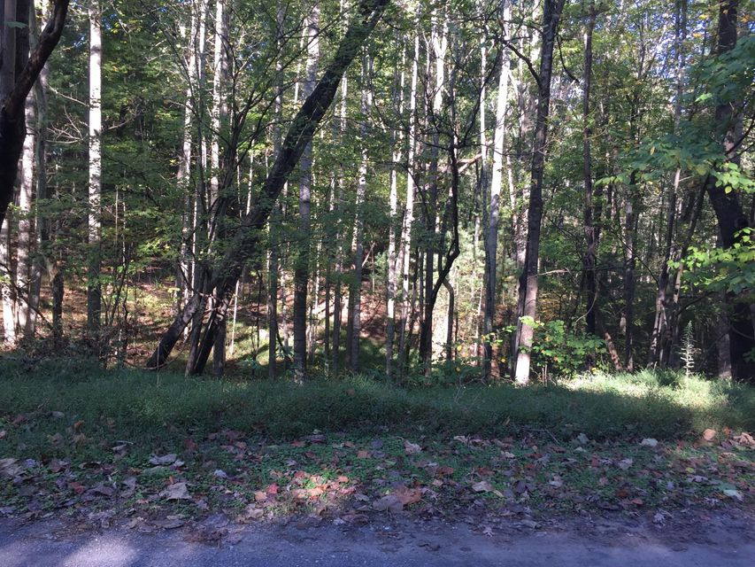 Photo of Lot 13 Bousman CIR Hardy VA 24101