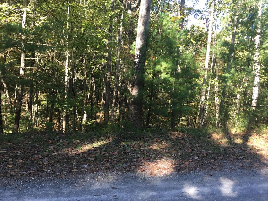 Photo of Lot 14 Bousman CIR Hardy VA 24101