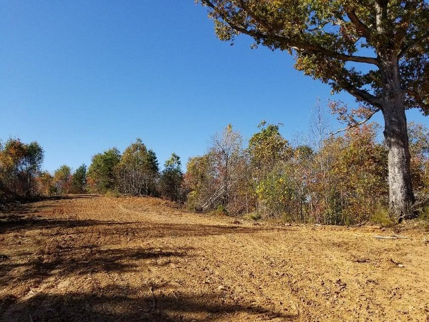Photo of 0 Holcomb Path RD Lynchburg VA 24501