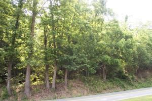 Photo of 0 Pelham DR Roanoke VA 24018