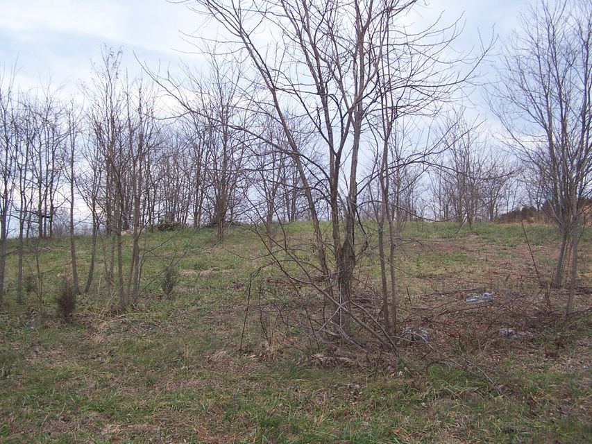 Photo of 0 Island Green RD Daleville VA 24083