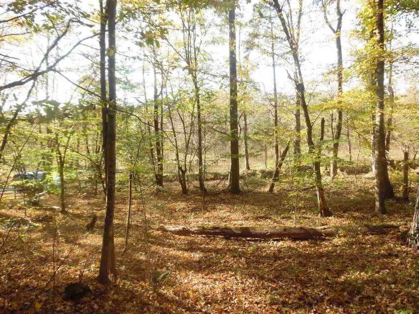 Photo of Lot 4 Solitude RD Buchanan VA 24066