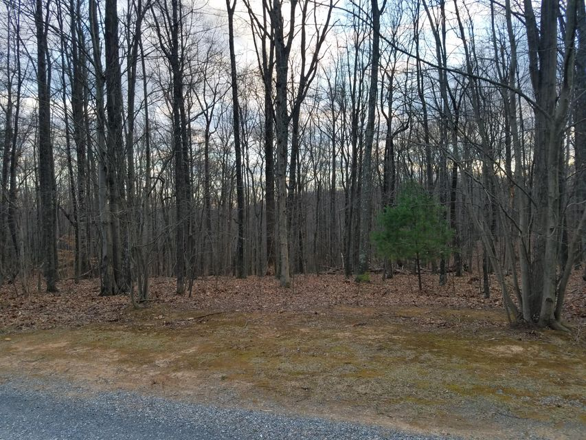 Photo of Lot 22 Woodshire DR Blue Ridge VA 24064