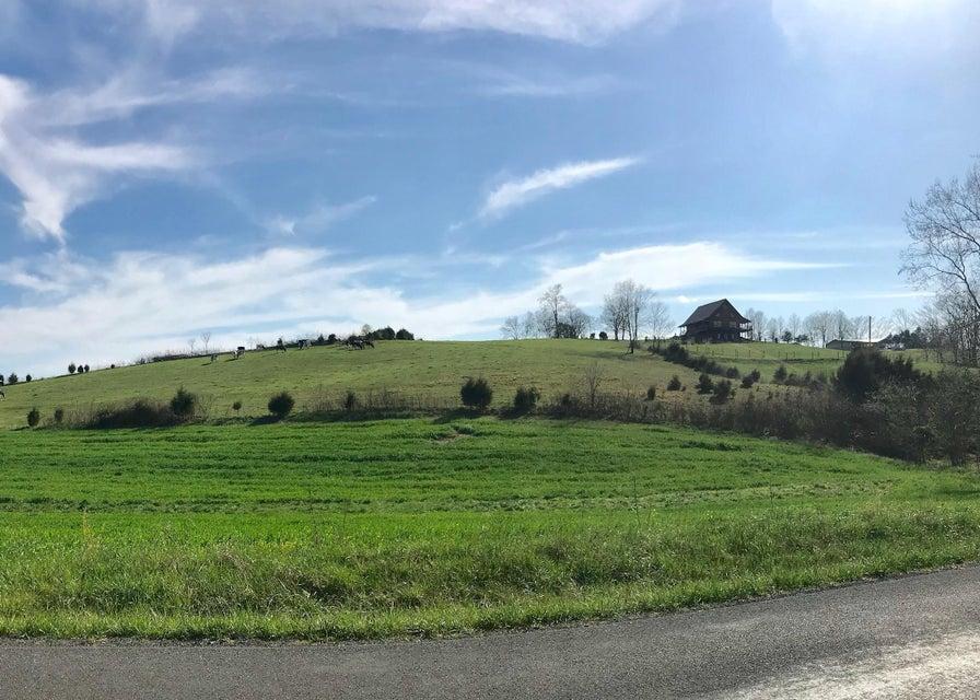 Photo of Lot 11 Timber Ridge Buchanan VA 24066