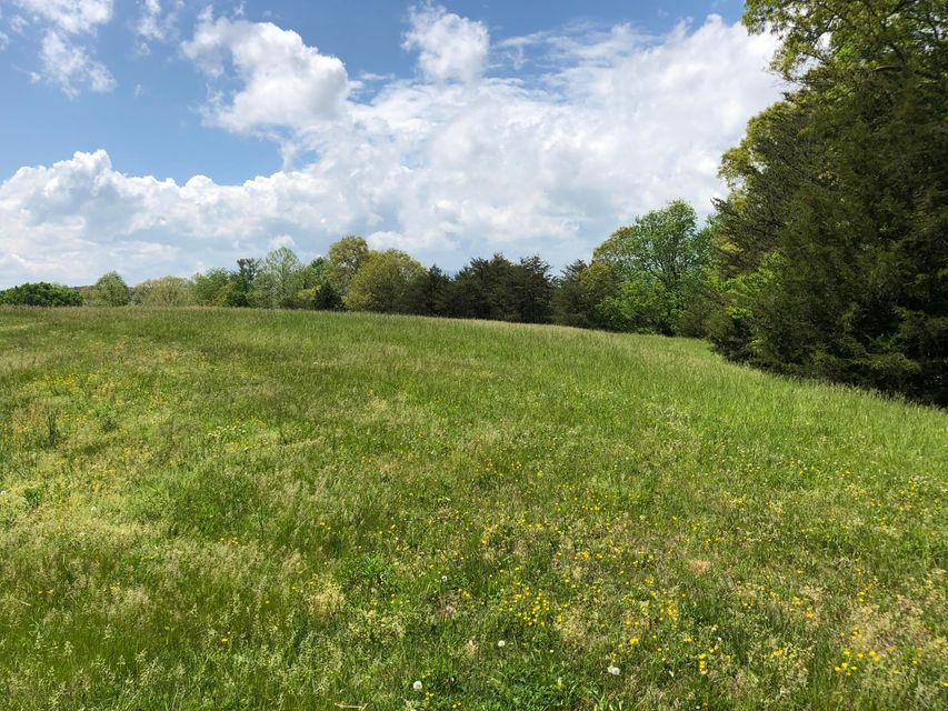 Photo of Lot 17 Nyle Ridge RD Wirtz VA 24184