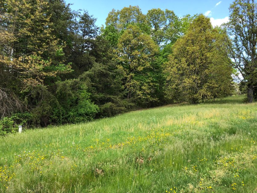 Photo of Lot 16 Nyle Ridge RD Wirtz VA 24184