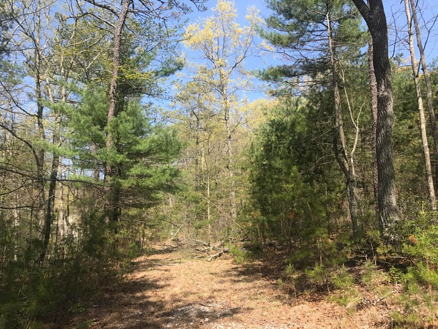 Photo of Lot 1 Homeplace DR Blacksburg VA 24060