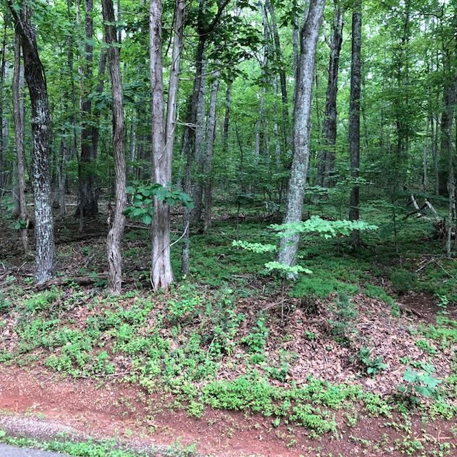 Photo of Lot 3 Charmwood CIR Moneta VA 24121