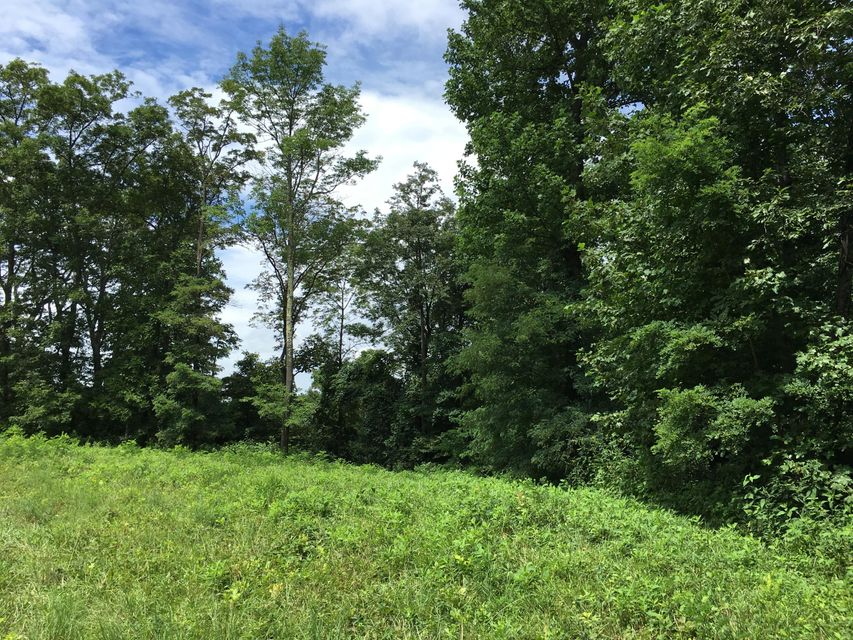 Photo of Tract A Five Mile Mountain RD Callaway VA 24067