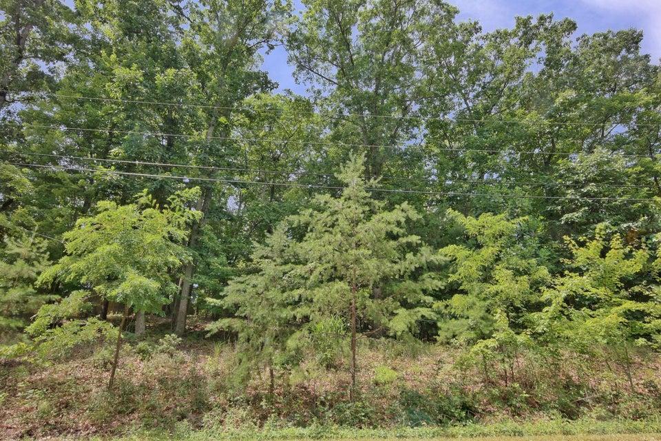 Photo of 0 Pin Oak DR Blue Ridge VA 24064