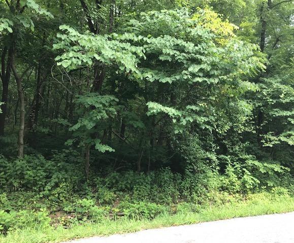 Photo of 0 Creekside DR Salem VA 24153