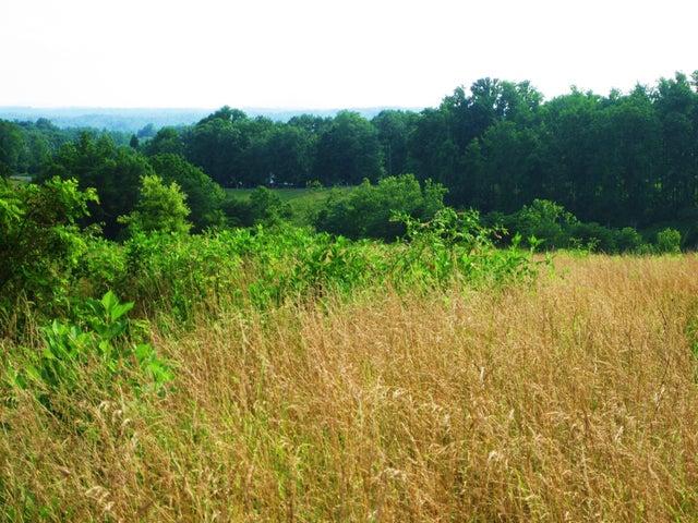 Lot 7 Chapel View LN, Goodview, VA 24095