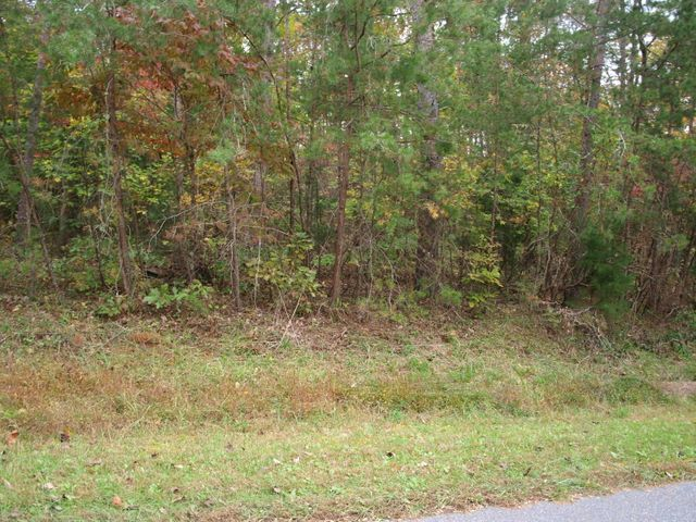 LOT 13 Peninsula DR, Moneta, VA 24121