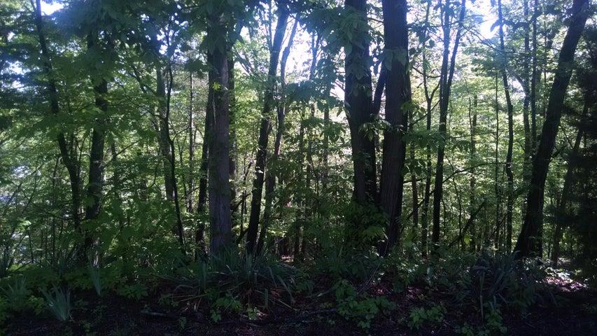 Lot 9 Cedar Bluff LN, Hardy, VA 24101