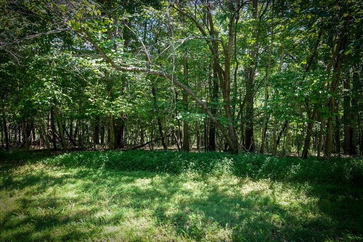 Lot 117 Meadow Point DR, Moneta, VA 24121