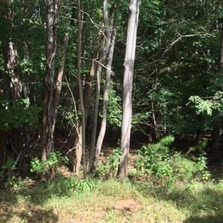 Lot 21 Leeward DR, Moneta, VA 24121